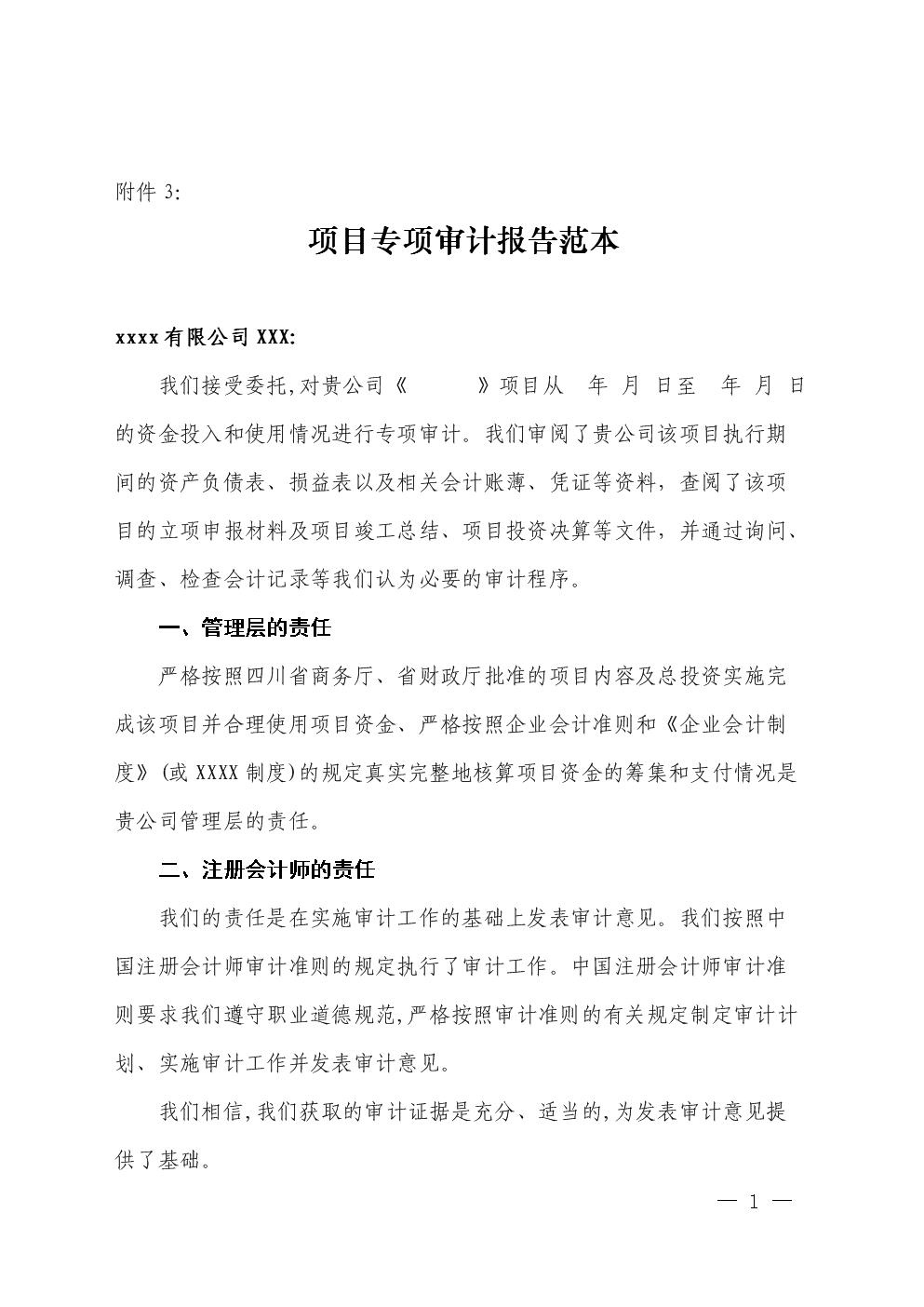项目专项审计报告范本.doc